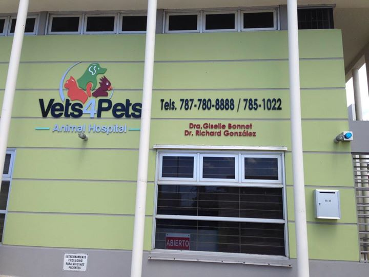 Vets4Pets Animal Hospital cover