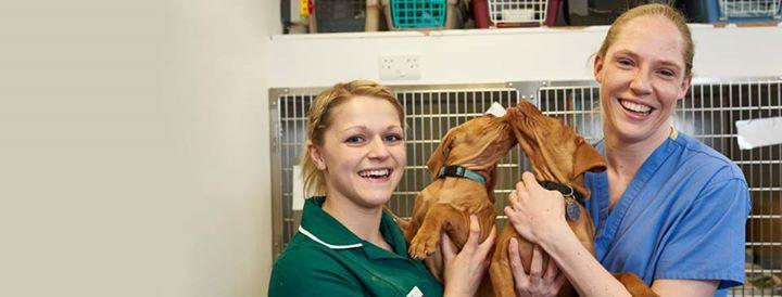 British Veterinary Association - BVA cover
