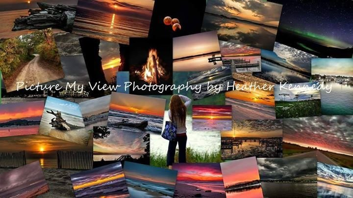 Picture My View Photography by Heather Kennedy cover