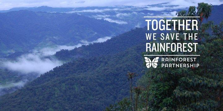 Rainforest Partnership cover