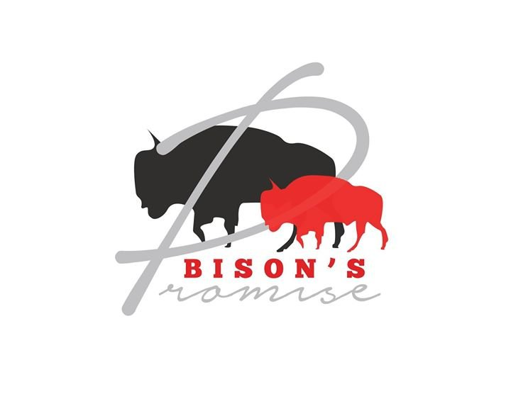 Bison's Promise cover
