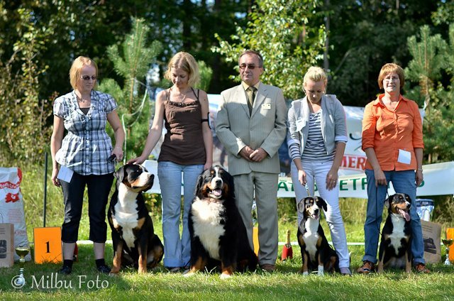 Latvian Swiss Mountain Dogs Club cover