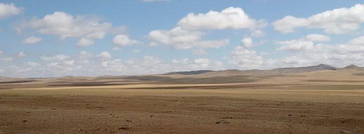 Konrad-Adenauer-Stiftung Mongolei cover