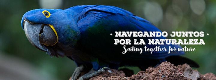 Loro Parque Fundación cover