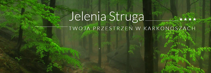 Jelenia Struga Medical SPA cover