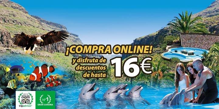 Palmitos Park cover