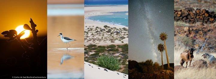 Fuerteventura, Reserva de la Biosfera cover