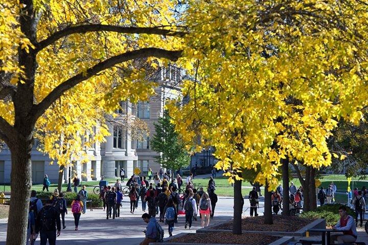 University of Iowa cover