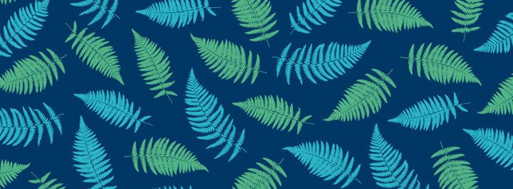 Dizaina studija TEIKA cover