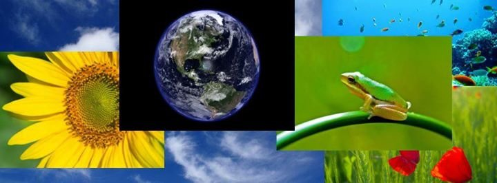 Earth Day Deutschland cover