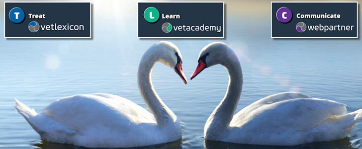 Vetstream cover