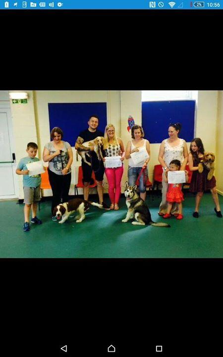Sam's K9 Academy and Puppy School Flintshire cover