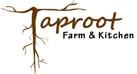 Taproot Homestead cover