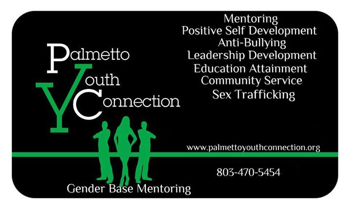 Palmetto Youth Connection cover