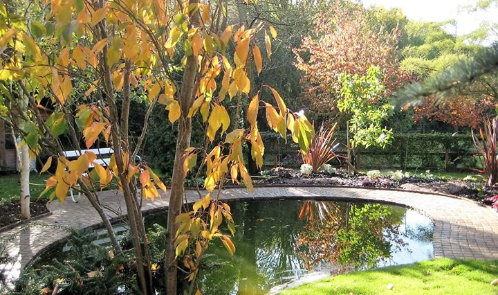 Milton Ernest Garden Centre cover