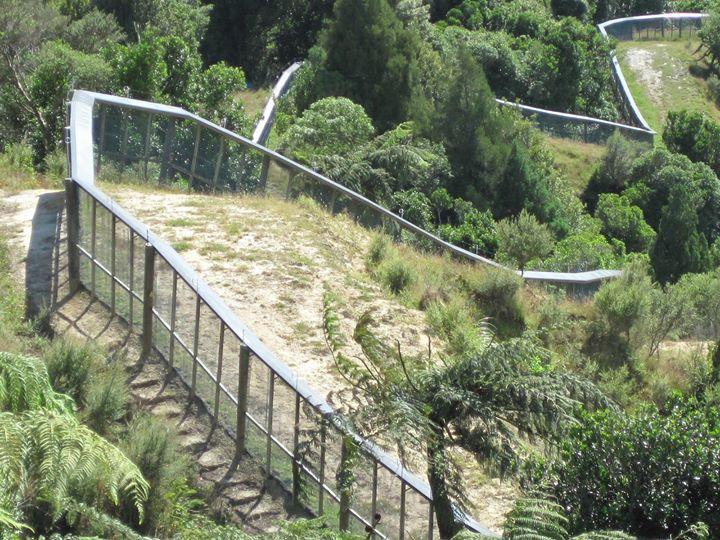 Rotokare Scenic Reserve Trust cover