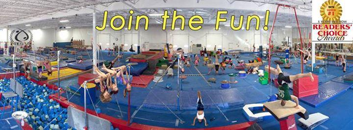 Elite Gymnastics Academy cover