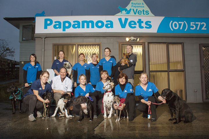 Bayfair & Papamoa Vets cover