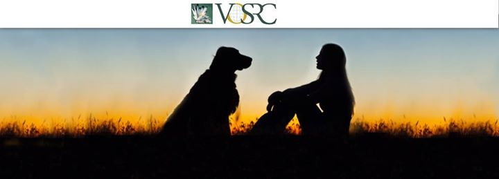 Veterinary Oncology Services and Research Center cover
