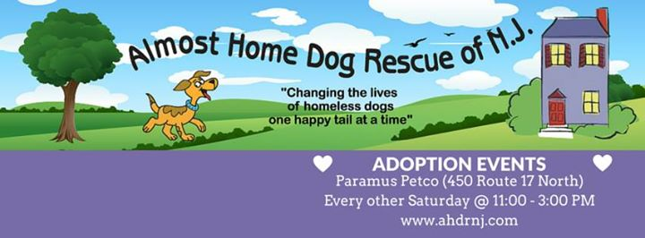 Almost Home Dog Rescue of NJ, Inc. cover