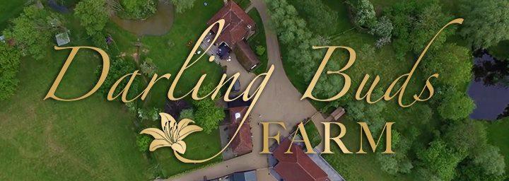 Darling Buds Farm cover