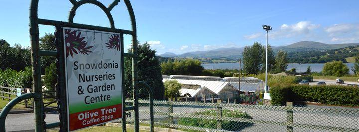 Snowdonia Nurseries & Garden Centre cover