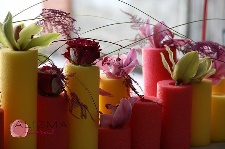 Alisma Floristas cover
