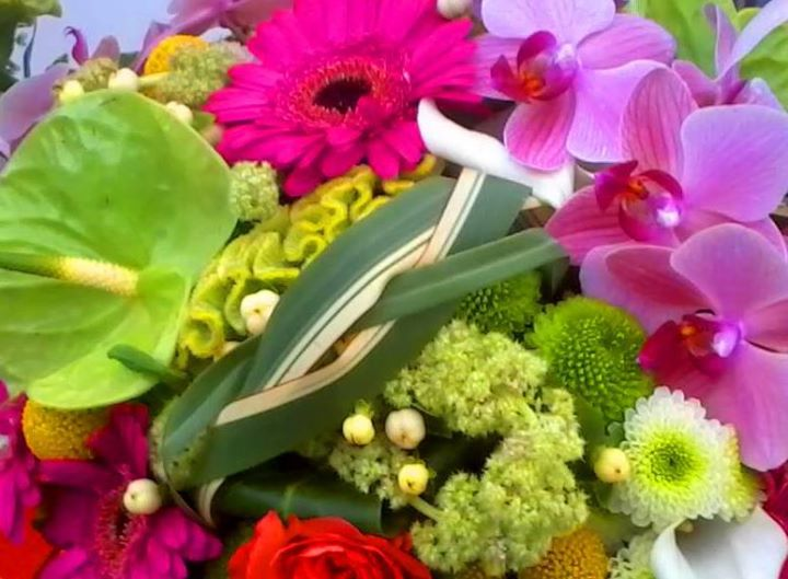 DewDRoPs Floral Design cover