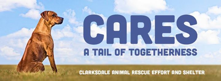 CARES Clarksdale Animal Rescue Effort and Shelter cover