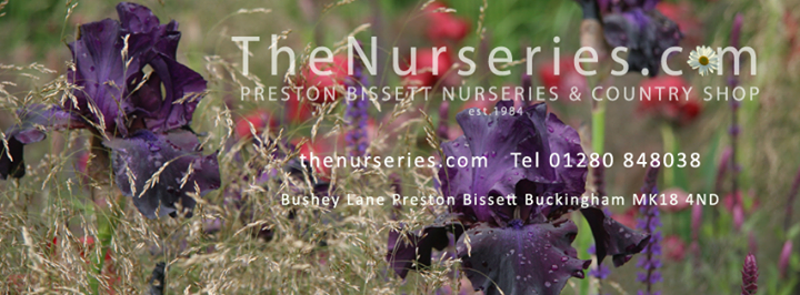 Preston Bissett Nurseries and Country Shop cover