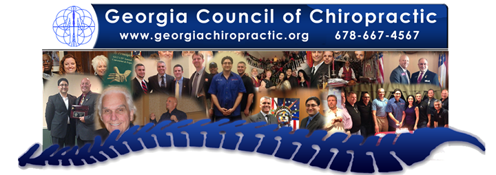 Georgia Council of Chiropractic cover