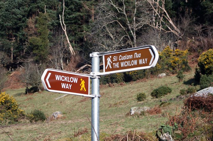 The Wicklow Way cover