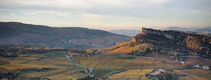 Visitez Mâcon et sa région cover