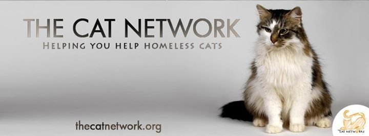 The Cat Network,Inc cover