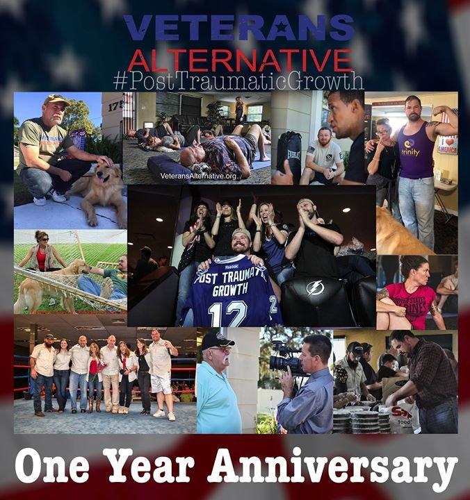 Veterans Alternative cover