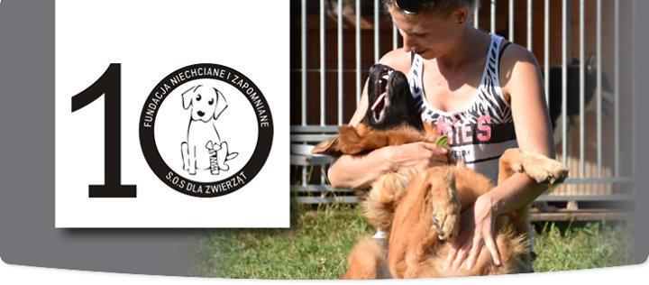 Fundacja Niechciane i Zapomniane - SOS dla Zwierząt cover