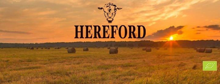 SIA Hereford - Bioloģiski audzētu liellopu gaļa cover