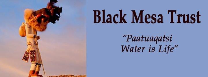 Black Mesa Trust cover