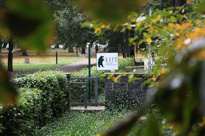 Zielony Niedźwiedź cover