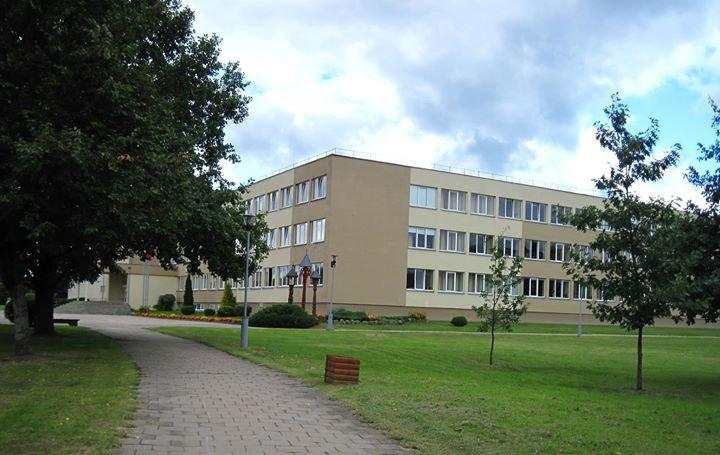 Druskininkų Senamiesčio vidurinė mokykla cover