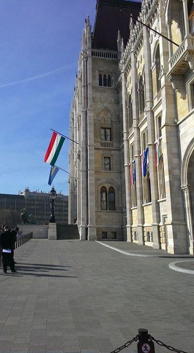 Samorząd Studentów Hungarystyki UW cover