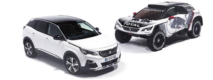 Peugeot Król-Knapik cover