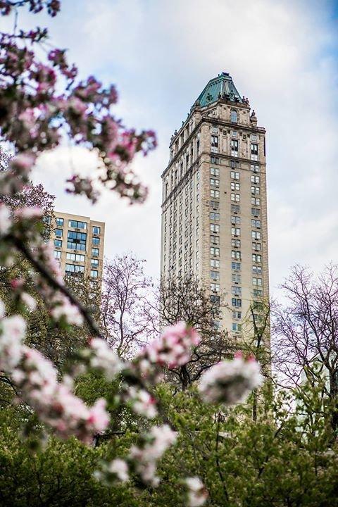 The Pierre, A Taj Hotel, New York cover