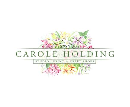 Carole Holding Shop cover