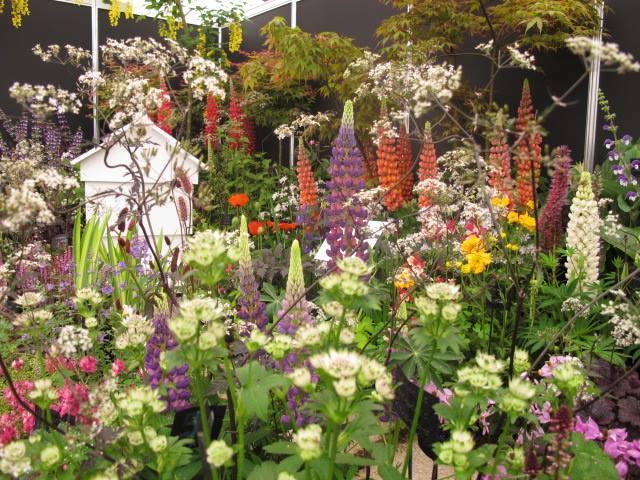 Boyne Garden Centre Slane cover