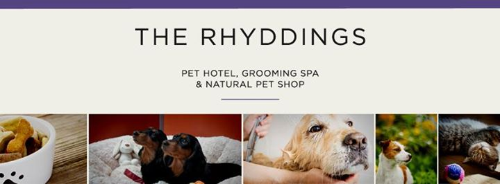 The Rhyddings Kennels and Grooming Salon cover