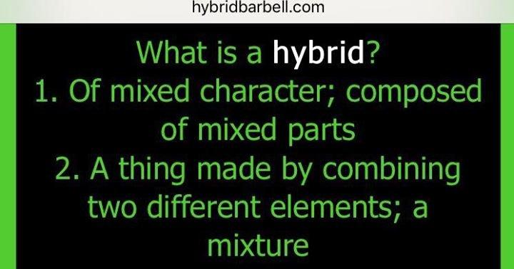 Hybrid Barbell cover