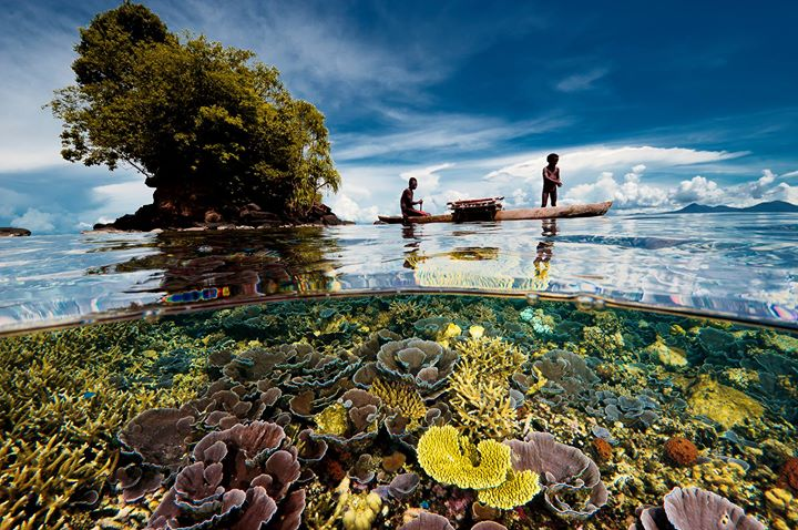 Papua New Guinea - The land of the unexpected cover