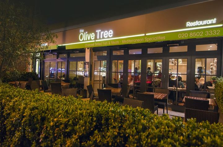 The Olive Tree - Loughton cover
