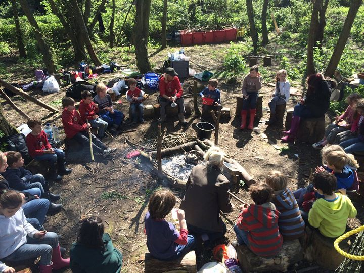 Wild Foxes Forest School CIC cover